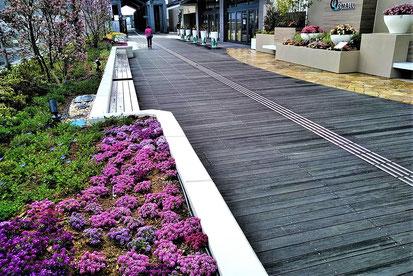 さわやかな花とみどりのオープン・スペース(2階デッキ)