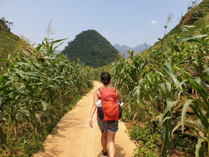 Weg zur Lung Khuy Höhle auf dem Ha Giang Loop