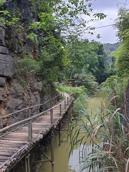 Bambusbrücke im Bird Park bei Tam Coc