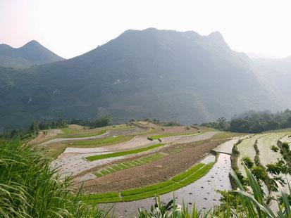 Reisfleder am Ha Giang Loop