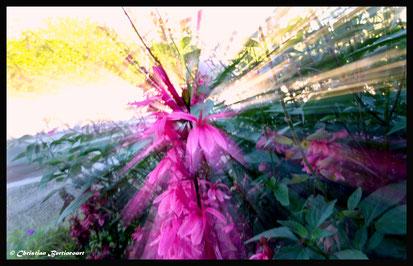 Un rayonnement floral avec la technique