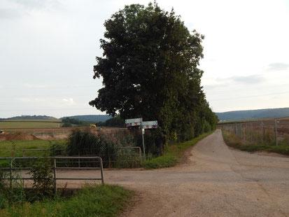 Fürtlesbach und von Cleebronn kommender Radweg eingezwängt zwischen neuer Baustelle Langwiesen III und geplantem Layher-Gelände Langwiesen IV