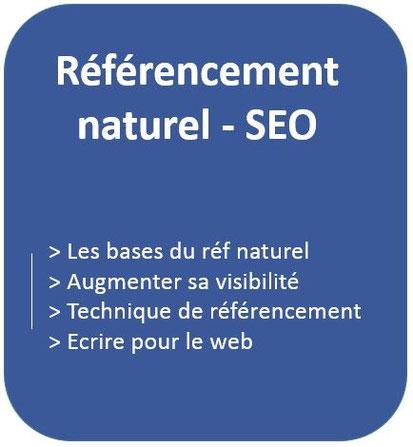 formation sur le référencement naturel, SEO avec les bases du référencement naturel & formation sur comment augmenter votre visibilité et les techniques d'écrire sur le web