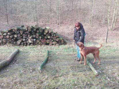 Neujahrs-Spenden-Wanderung am 14.01.2018, Foto: K. Anfang