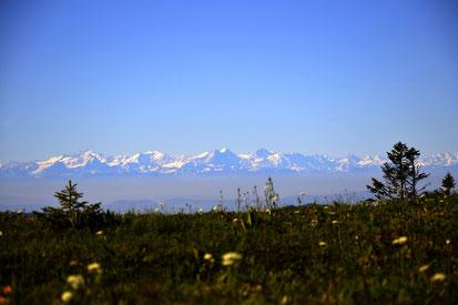 eplatzer,  Schwarzwald,  Feldberg,  Eiger  Mönch  Jungfrau