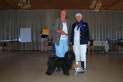 BOB Höchst 2013  Tibet Terrier und BIS Shamba Kyi F´Lhalu Chandra