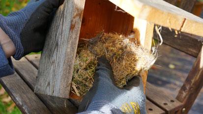 Alte Nester rechtzeitig entfernen, dann kann sich das Vogelpaar wieder neu Eingerichten, nicht nur im LBV Donau-Ries