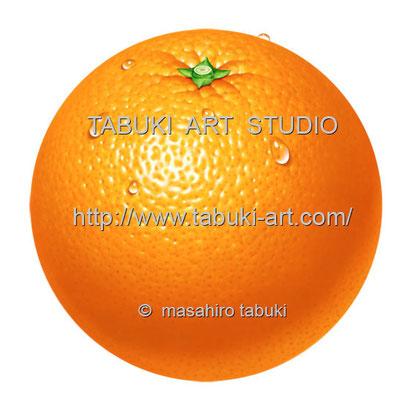 Orange水滴 RD_10509