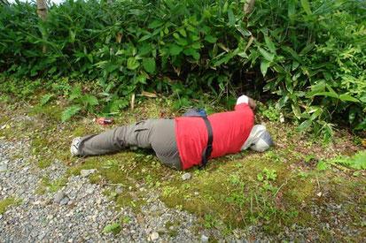 突然Hiroが倒れた! いえいえ冗談、ウメガサソウを撮影中です