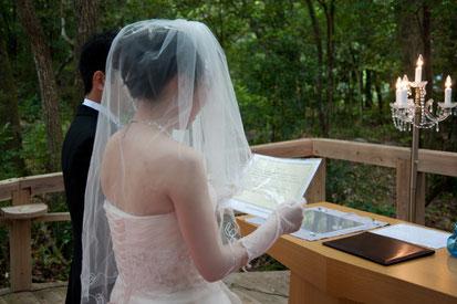 屋久島の森に結婚を誓う