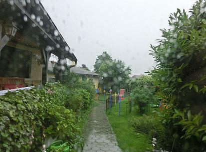Es schüttet, unser schöner Welpengarten ist verlassen ... das Wetter ist gemein!