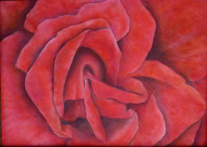 Rose Öl auf Leinwand 60x80cm