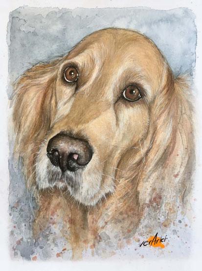 Hund Tierportrait Tierillustration Geschenkidee