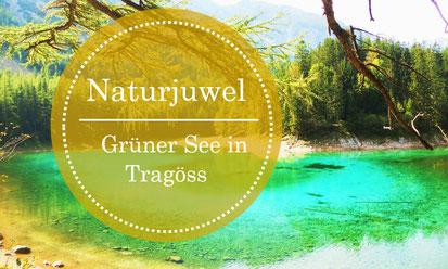 Grüner See in Tragöss - Naturjuwel