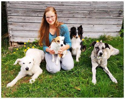 Hundetrainerin mit Hunden, Hundetrainerausbildung