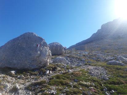 Spitzmauerplan - nach dem Aufstieg über das Prielschutzhaus und den Blosskogel am Weg zur Spitzmauer