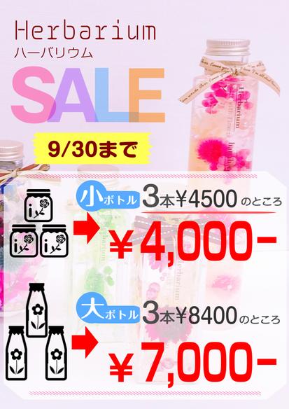 花ひろ FBC福井放送 ハーバリウム 花キューピット