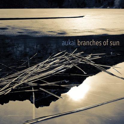 """Schallplattencover der LP """"Aukai - Branches Of Sun"""""""