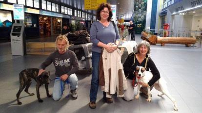 Februar 2015 und wieder nehmen wir 2 Hunde mit in ein neues Leben!