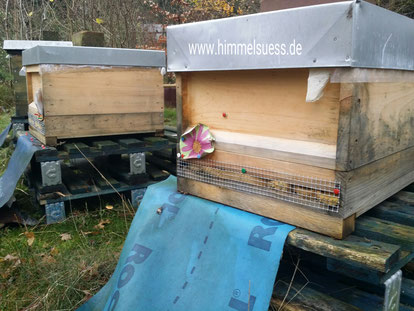 Imkerei himmelsüß - Lehrbienenstand