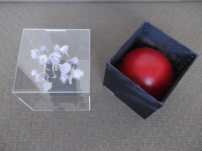 box art [Fukushima] 2013 .10
