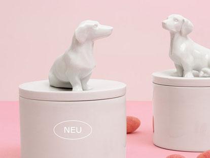 Dackeldose Porzellan Berlin feinesweisses handgefertigt Manufaktur