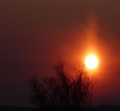 Alles muss im Innern brennen, um nach Außen leuchten zu können.
