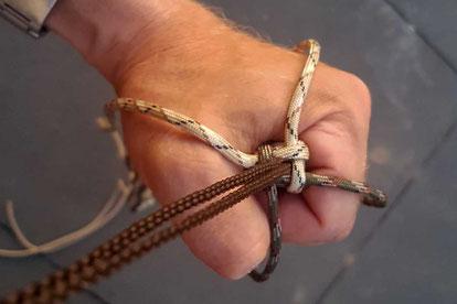 Der Box Knoten