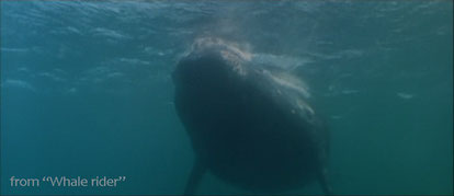 Whale rider, 2002 - the legend