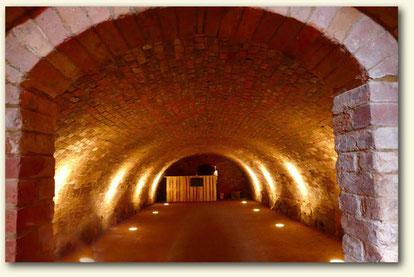 Gewölbe eines Weinkellers in Schlieben / Lausitz