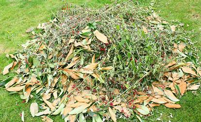 Enlèvement déchets verts Toulouse
