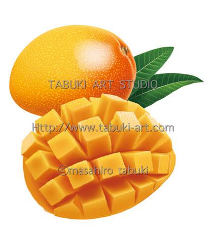 RD1274 マンゴー イラスト mango トロピカルフルーツ 果物