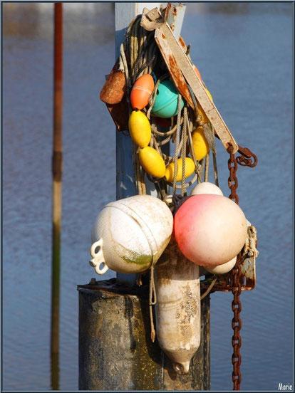 Guirlande marine sur un quai au port ostréicole de La Teste de Buch, Bassin d'Arcachon
