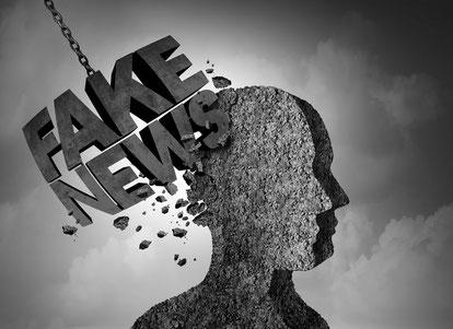 Fake News als manipulativer rhetorischer Kampfbegriff zur Verhaltenssteuerung und Beeinflussung von Entscheidungen, Fake News als Technik, Wer legt fest, was Fake News sind?