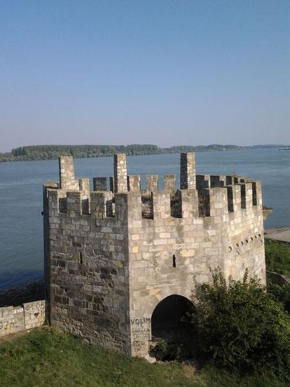 Voyage en Serbie - la forteresse de Smederevo