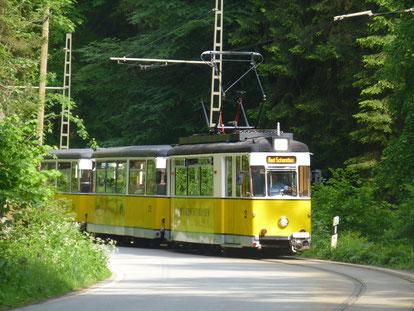 Die gelbe Kirnitzschtalbahn - eine historische Straßenbahn im Nationalpark Sächsische Schweiz, Foto: Kaj Kinzel