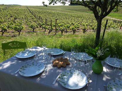 pique-nique-vignoble-Vouvray-Touraine-Vallee-Loire-produits-terroir-regionaux-Myriam-Fouasse-Robert-Rendez-Vous-dans-les-Vignes