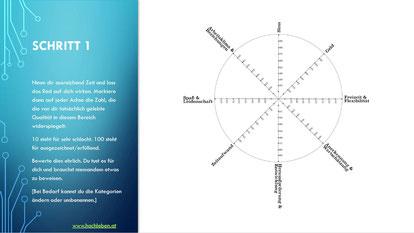 Job Rad, Arbeit Status Quo Analyse, Gründe für Job Unzufriedenheit, Job Bewertung, Arbeits Situation, Arbeits Zufriedenheit, Potentialanalyse Job, Berufung