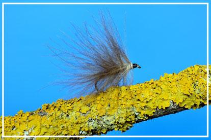 Silver sedge, flyfishing, fly tying