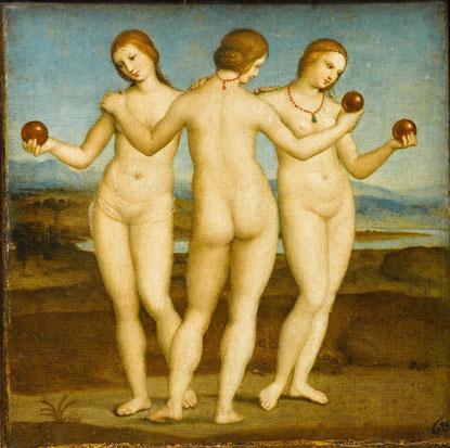 raphael. 1504.