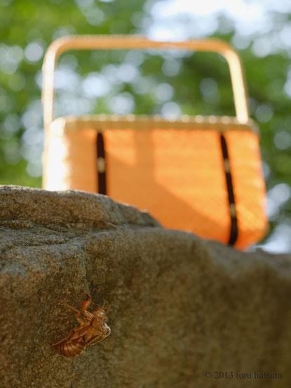 セミオーダーの竹籠づくり