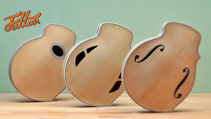 Bluegrass Arched Top Mandolin