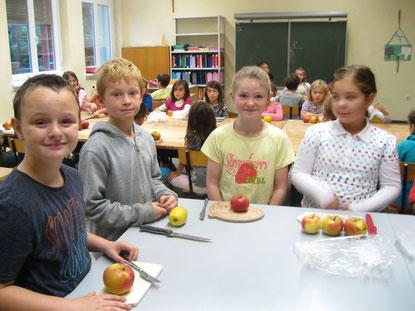 Äpfel, Brettchen und Messer liegen schon bereit.