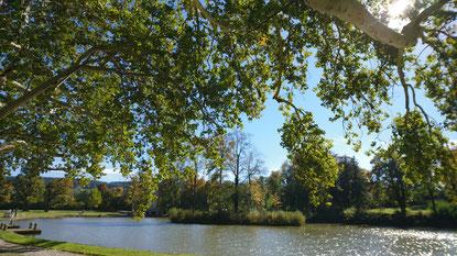 Park Schloss Hernstein