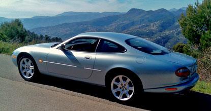 autocollant Jaguar tous modéles