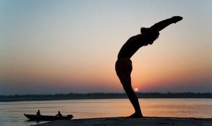 Bryan Kest, Power Yoga. Tigress Yoga, die Symbiose von Power Vinyasa Yoga &  Kung Fu. Ideal für sportliche Anfänger. Yoga Ausbildungen & Weiterbildungen für Yogalehrer, Physiotherapeuten & Sportprofis. In Zürich Oerlikon.