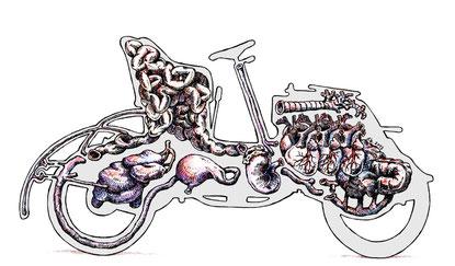 La 628-E8 de MIRBEAU écorchée par François Bouët