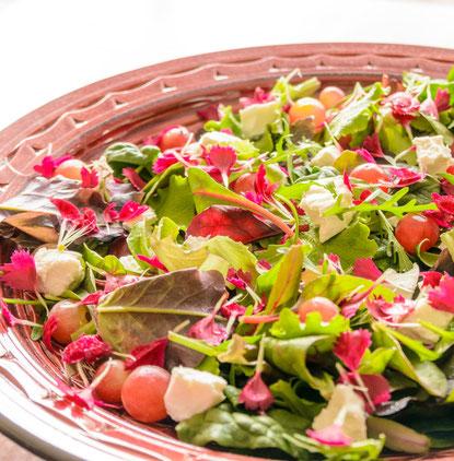 verre-van-verre-groene-salade