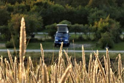 Bulli Roadtrip Dänemark Campingplätze