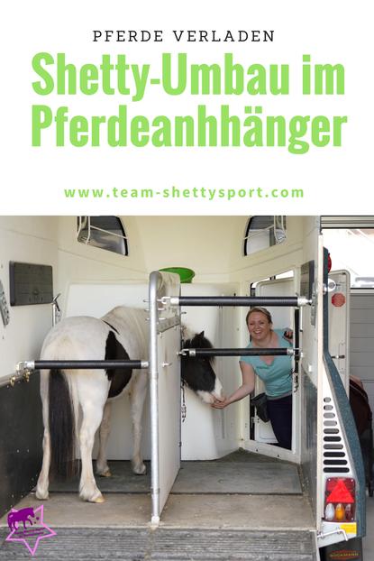 Shetty im Hänger fahren - Shetty-Umbau für Pferdeanhänger